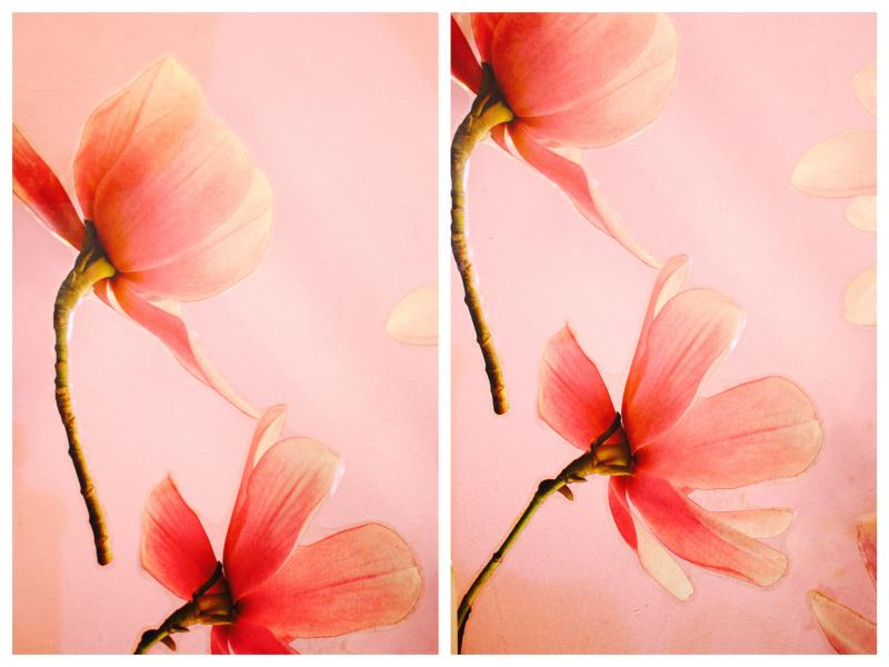 IMG_2157_Fotor_Collage_Femme